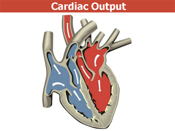 how to determine cardiac output from work capacity
