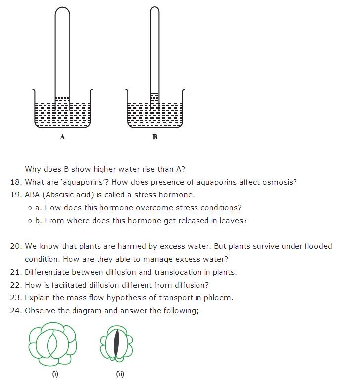 Important Questions Class 11 Biology Chapter 11 Transport Plants Part 5