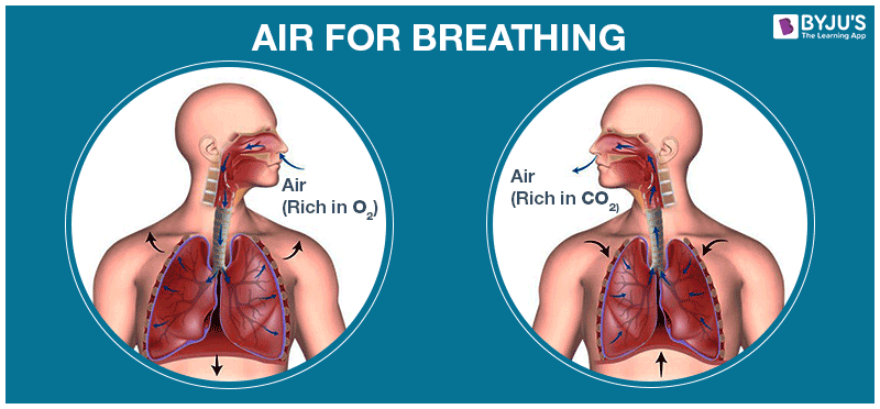 Air for Breathing