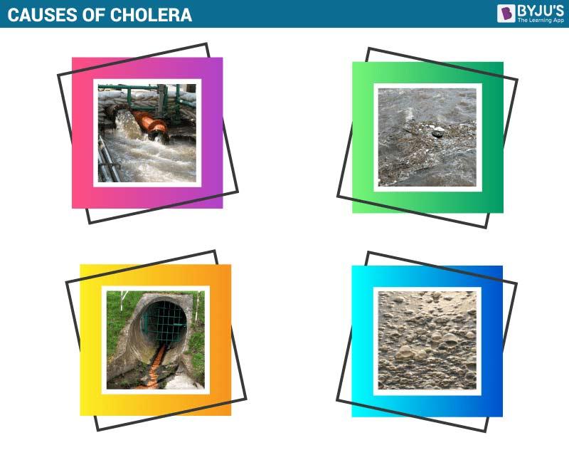 Causes of Cholera