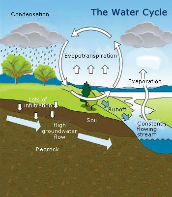 water cycle the bio geochemical cycle