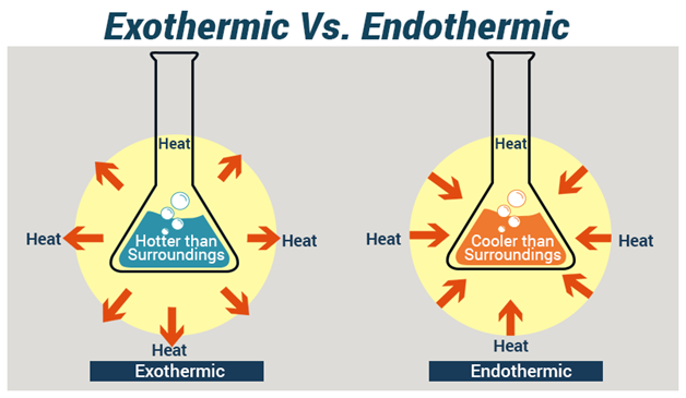 Endothermic and Exothermic