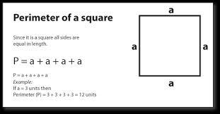 Perimeter of Square