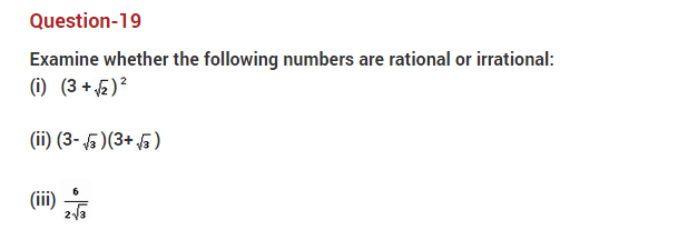 important questions class 10 maths chapter 1 real numbers 19