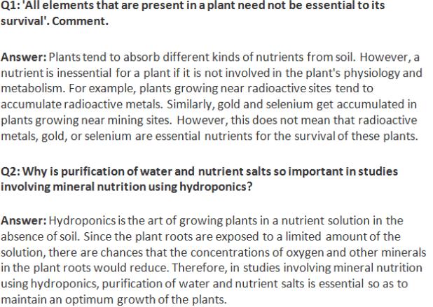 NCERT Solutions Class 11 Biology Chapter 12 - Download PDF - Blog