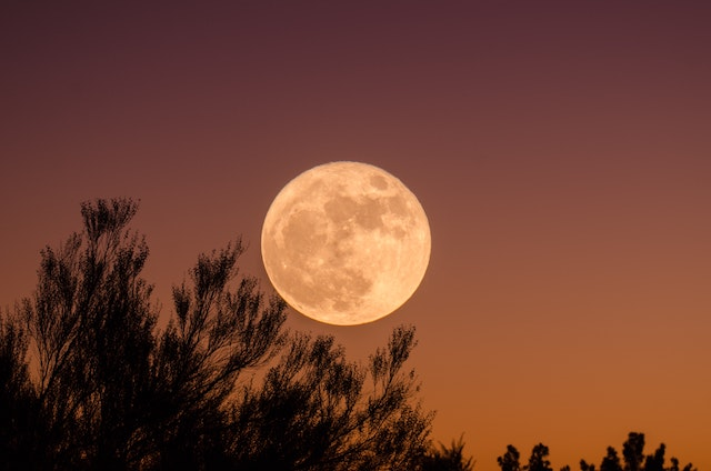 Contrary to what the name might suggest, the Pink Supermoon is not actually pink in colour and is named for the blooming of the Pink Phlox flowers in April. (Photo by Ganapathy Kumar via Unsplash)