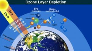 Causes Effects And Solutions To Ozone Layer Depletion