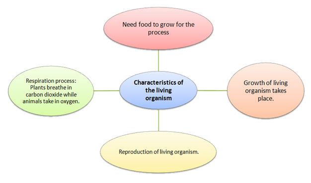 characteristics of living organism