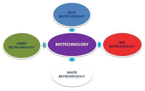 Biology7