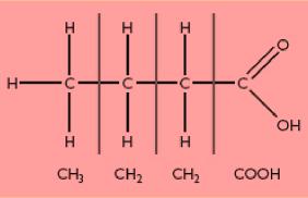 Condensed_Structural_Formula