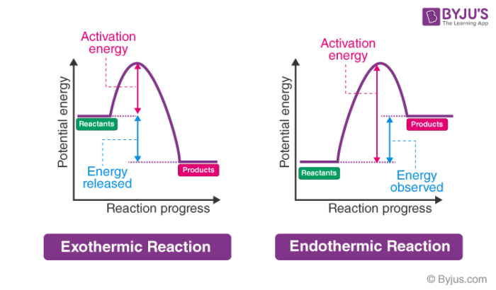 Energy Level Diagram of an Endothermic Reaction