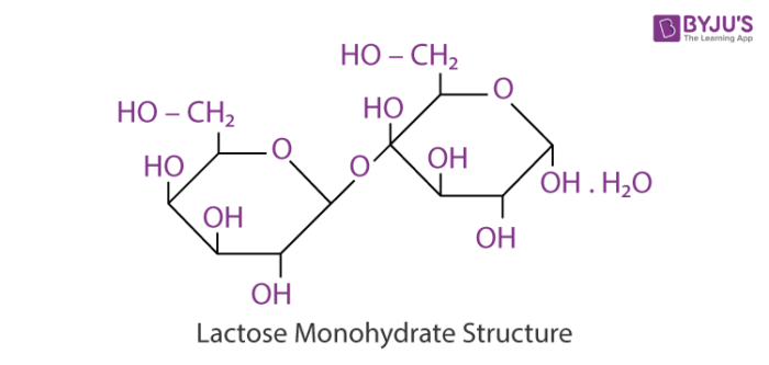 Lactose Monohydrate Structure