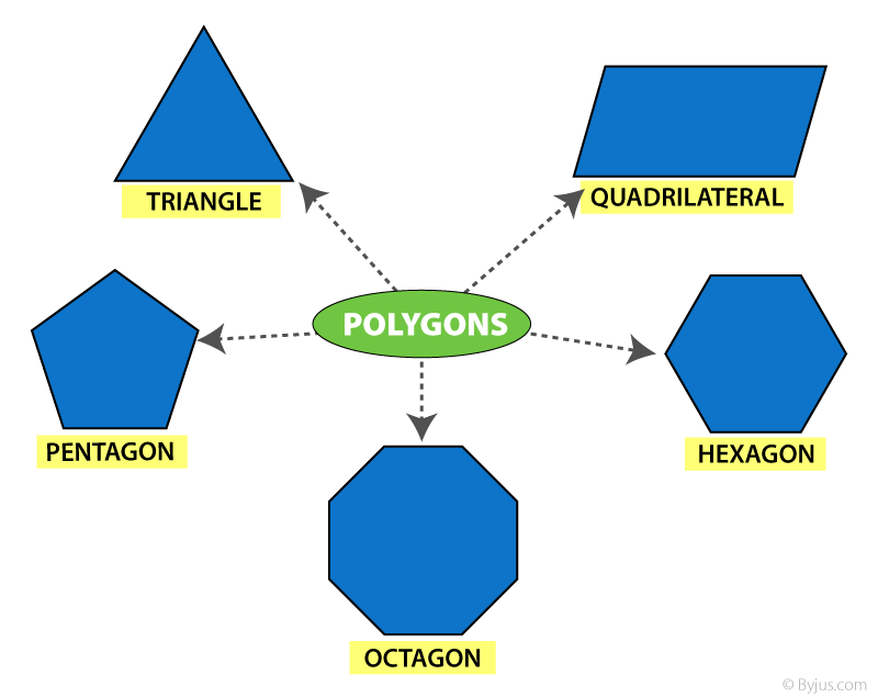 Polygon Types