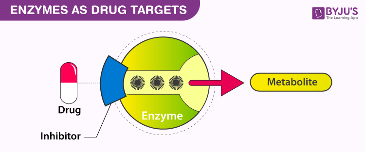 Enzymes as Drugs Targets
