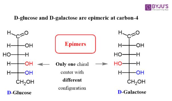 C-4 epimers