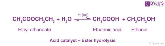 Acid catalyst - Ester hydrolysis