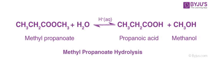 Methyl Propanoate Hydrolysis