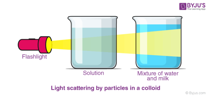 Examples of Colloids