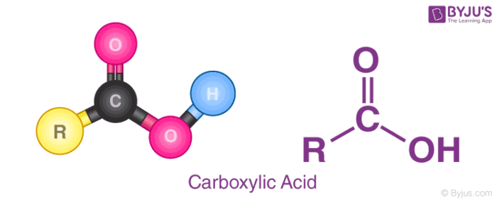 General Structure of Carboxylic Acid