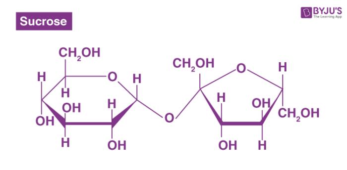 Disaccharides - Sucrose