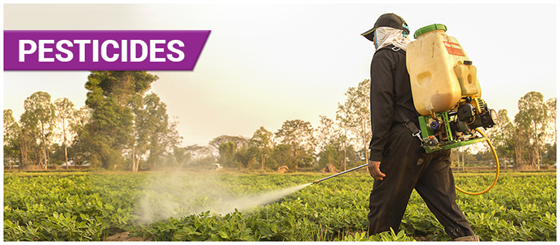 Pesticides - Definition, Types, Uses, and Harmful Effects