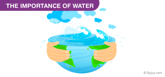 Water And Its Importance
