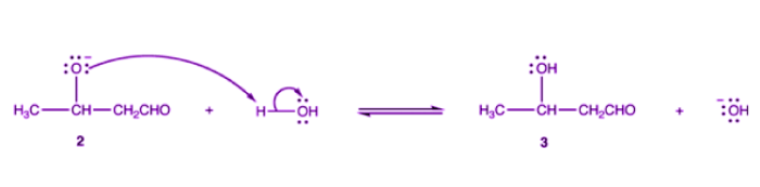 Alkoxide ion 2 is protonated by water