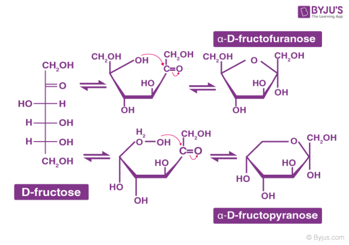 Carbohydrate Classification - Fructose
