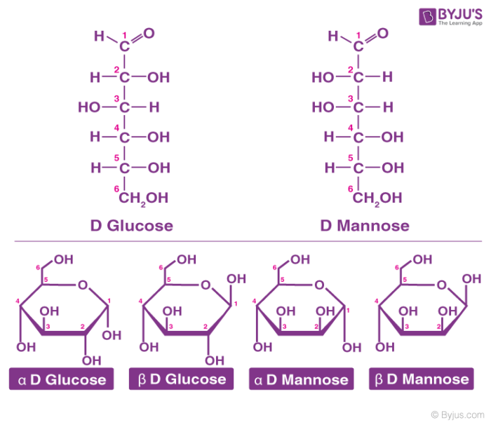 Cyclic Structure of Carbohydrates - Glucose