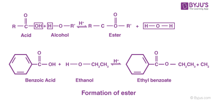 Formation of ester