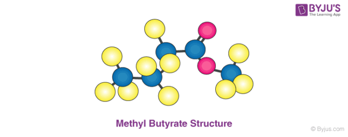 Methyl Butyrate Structure