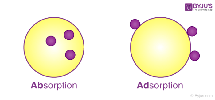 Adosrption vs absorption