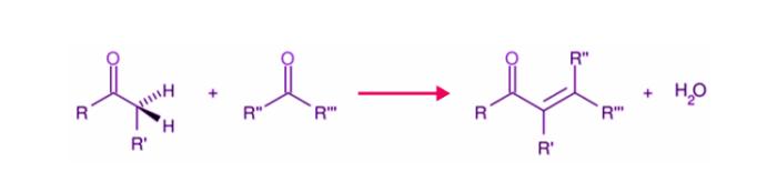 Aldol Condensation Reaction