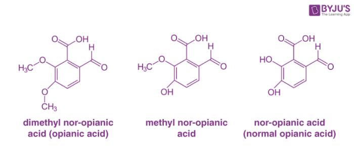 Homologous Series Examples