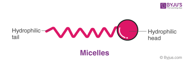 Micelles