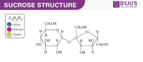 Structure of Sucrose