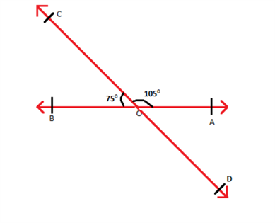 Vertically Opposite Angles - Example