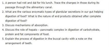 Class 11 Biology Chapter 16 - Digestion and Absorption