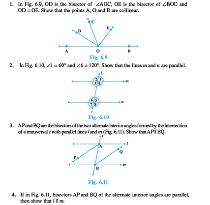 Class 9 Math Chapter 6 - Lines and Angles