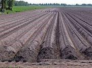 Agriculture : Soil Preparation