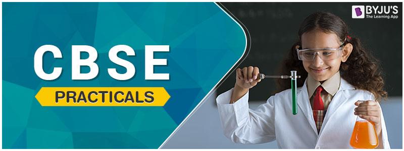 CBSE Practicals