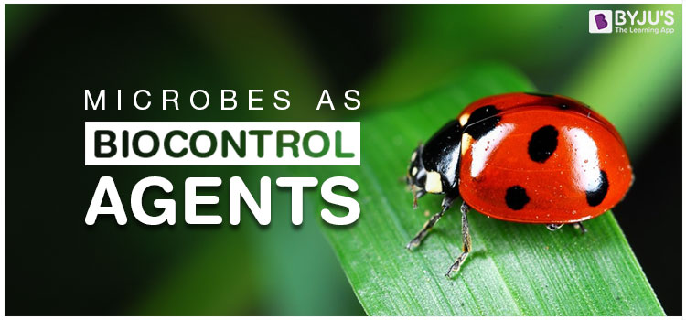 Microbes as Biocontrol Agents