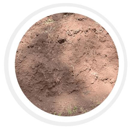 Silty Soil - Finer particles when compared to sand