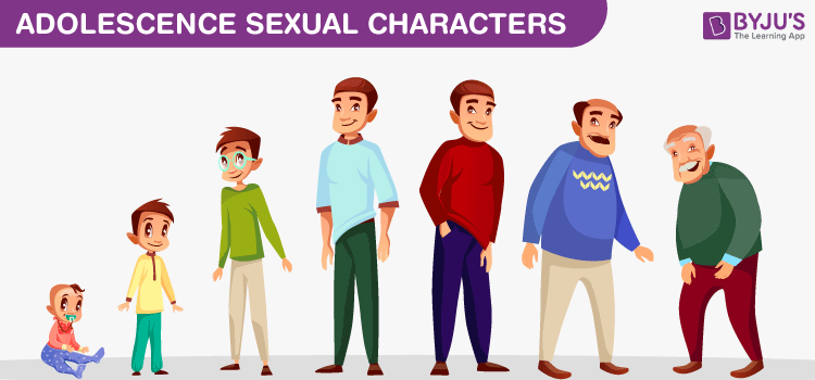 Adolescence Sexual Characters