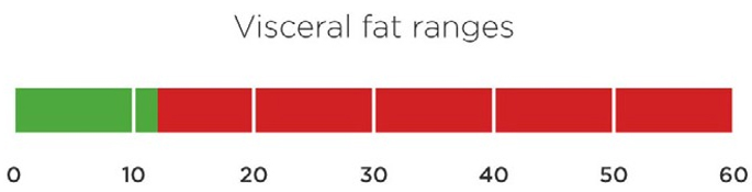 Visceral Fat Range
