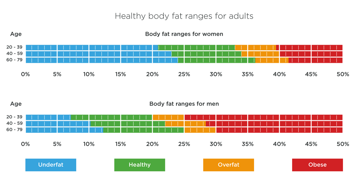 Healthy Body Fat