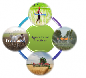 Agriculture Practices Organic Farming Irrigation Crop Protection