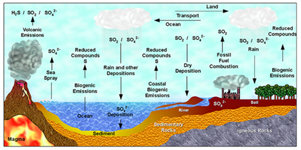 biogeochemical cycles ppt