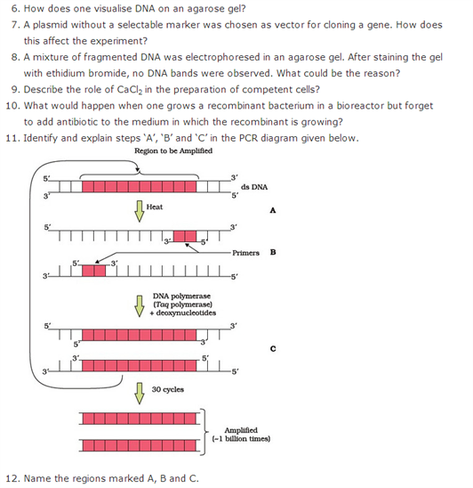 Important Questions Class 12 Biology Chapter 11 Biotechnology Principles Processes Part 2