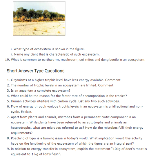 Important Questions Class 12 Biology Chapter 14 Ecosystem Part 2